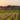 Sur la route des vins de Rhodes