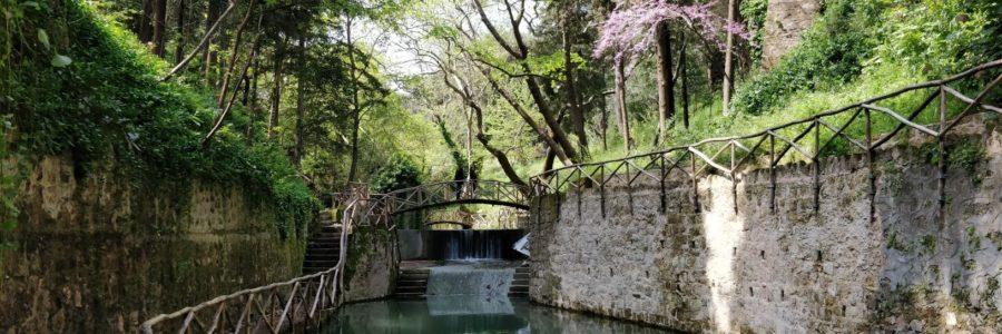 Le Parc Rodini